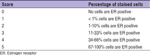Estrogen receptor breast cancer definition