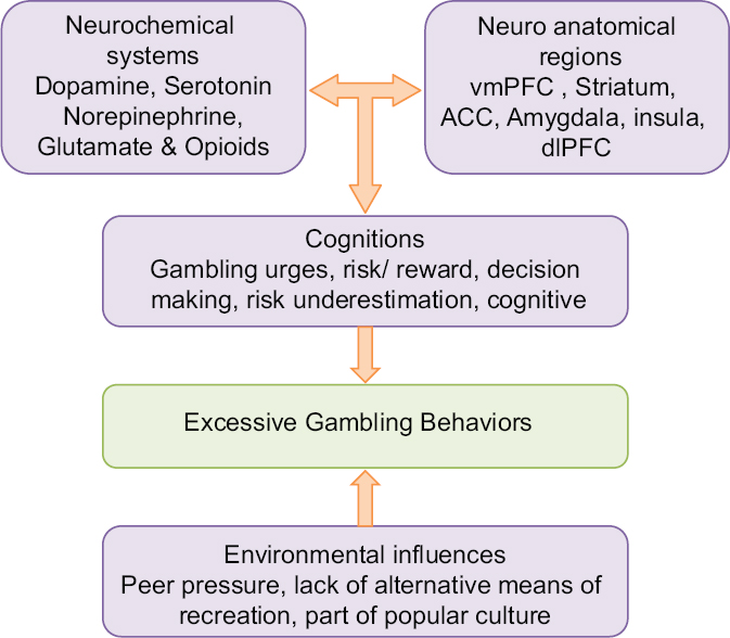 Figure 2: Contributing factors for excessive gambling behaviors